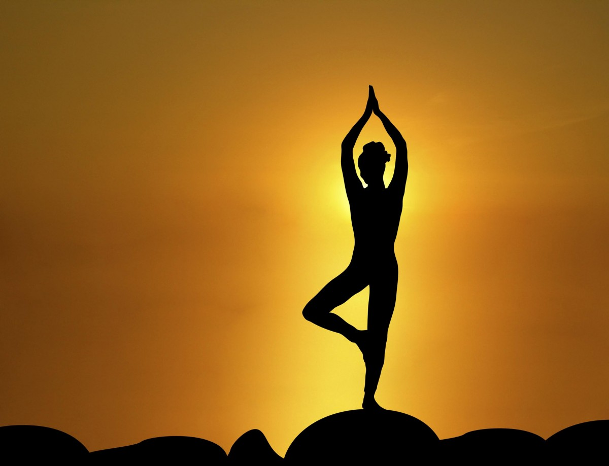 Hatha Vidyà la mente nel corpo